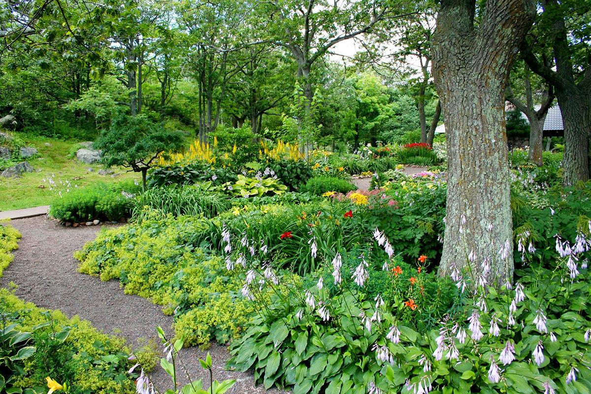 garden-1200px