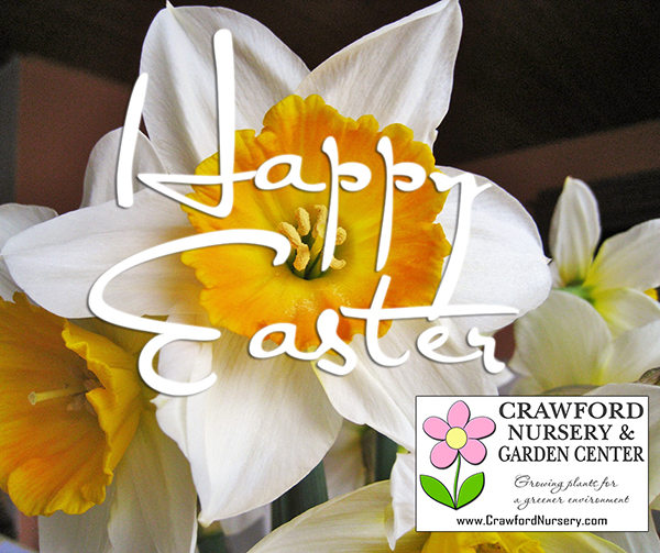 Happy Easter from Crawford Nursery! We're located on Highway 411 in Odenville, Alabama. Drive a little, save a lot! Shrubs, flowers, trees | 205.640-6824