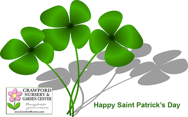 Happy Saint Patrick's Day 2016 from Crawford Nursery! We have everything you need to create your landscaping masterpiece this spring so stop | 205.640.6824