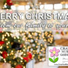 Merry Christmas from Crawford Nursery and the Crawford family. May we always remember the reason for the season. Merry Christmas from Crawford Nursery & Garden Center and the Crawford family. May we always remember the reason for the season as we celebrate our Savior's birth!